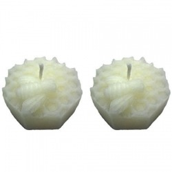 Beeswax Candles Bee Comb Pair